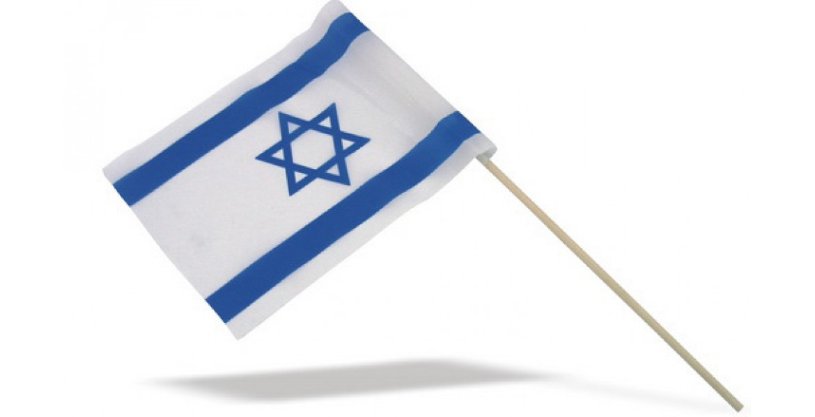 Israel Flag on Stick