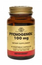 Pycnogenol® 100 mg Vegetable Capsules  (30)