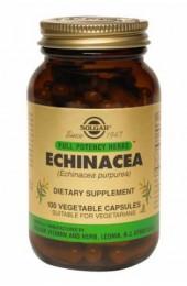 FP Echinacea Vegetable Capsules  (100)